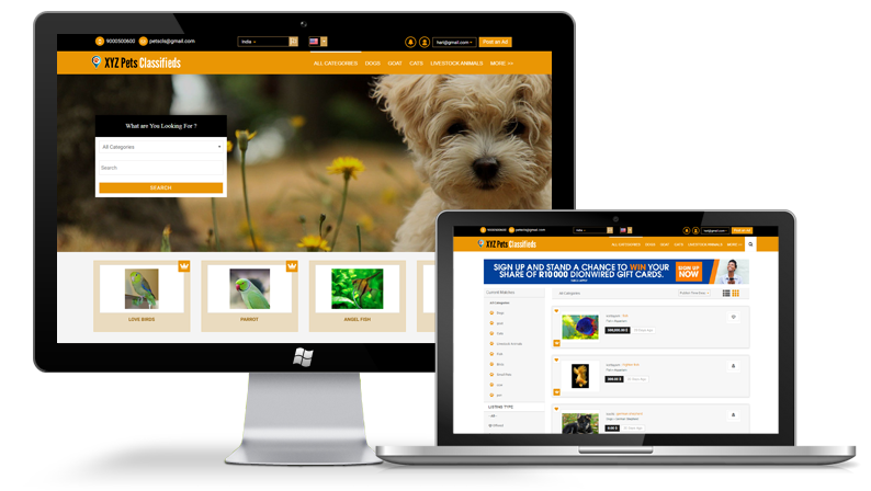 XYZ Pets Classifieds